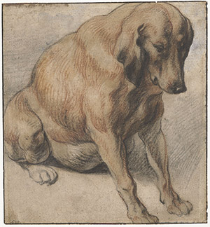 seated-dog